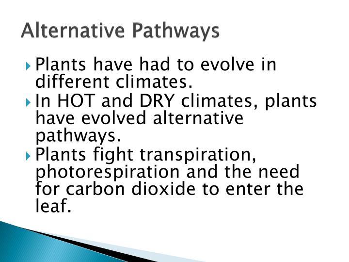 Alternative Pathways