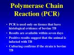 polymerase chain reaction pcr27