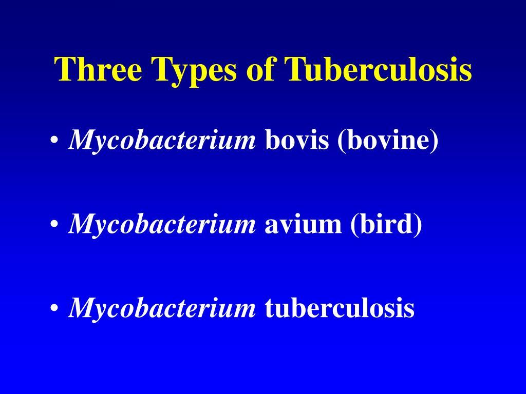 Three Types of Tuberculosis