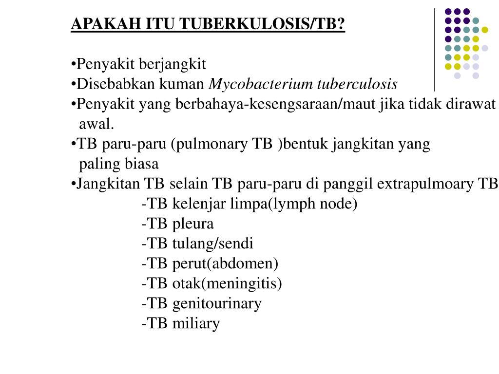 APAKAH ITU TUBERKULOSIS/TB?