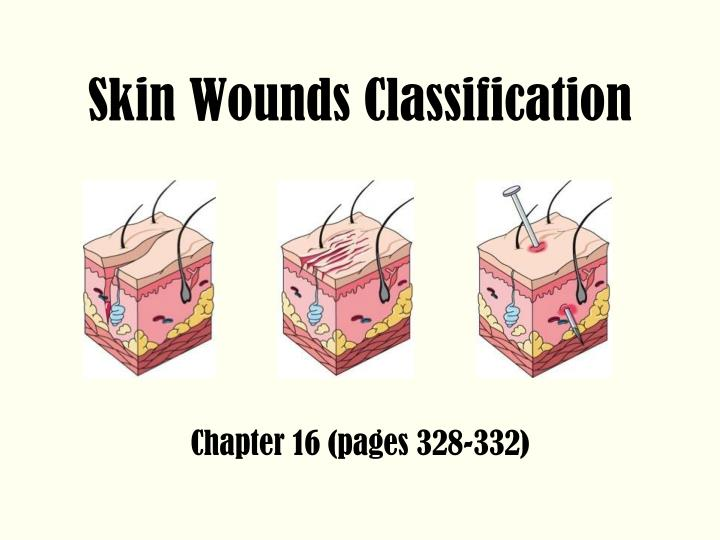skin wounds classification n.
