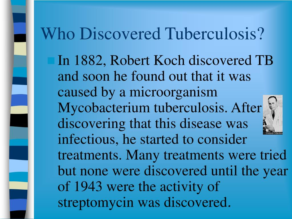 Who Discovered Tuberculosis?