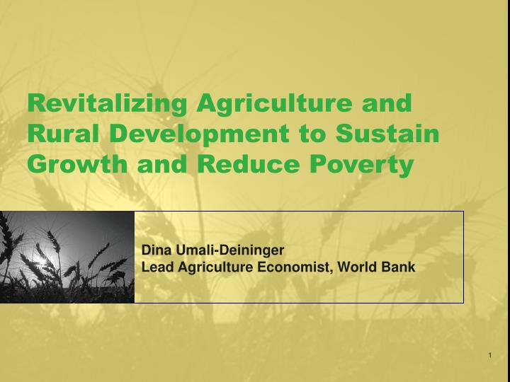revitalizing agriculture and rural development to sustain growth and reduce poverty n.