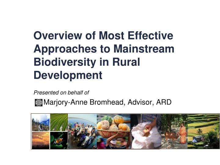 overview of most effective approaches to mainstream biodiversity in rural development n.