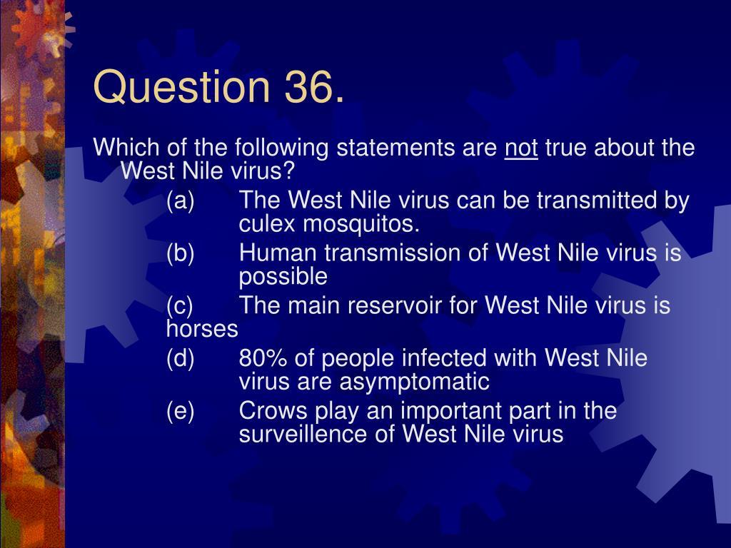 Question 36.