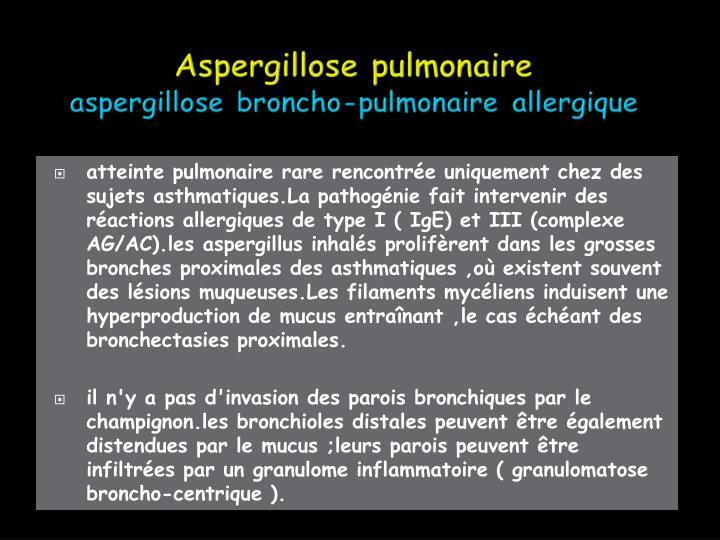 atteinte pulmonaire rare rencontrée uniquement chez des sujets asthmatiques.La pathogénie fait intervenir des réactions allergiques de type I ( IgE) et III (complexe AG/AC).les aspergillus inhalés prolifèrent dans les grosses bronches proximales des asthmatiques ,où existent souvent  des lésions muqueuses.Les filaments mycéliens induisent une hyperproduction de mucus entraînant ,le cas échéant des bronchectasies proximales.