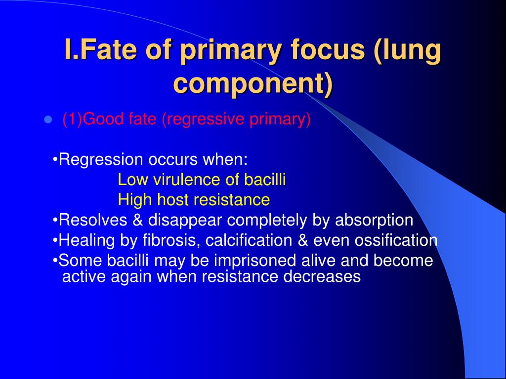 I.Fate of primary focus (lung component)