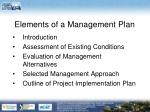 elements of a management plan