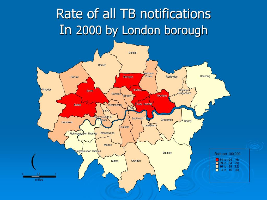 Rate of all TB notifications