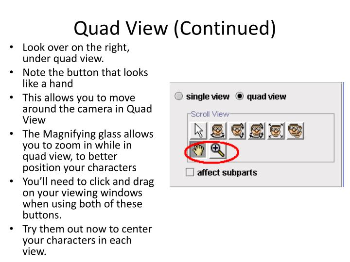 Quad View (Continued)