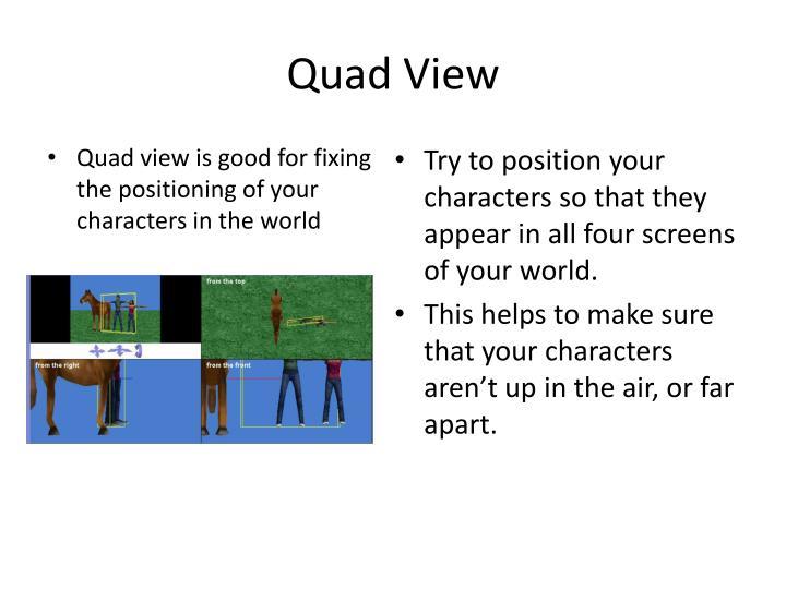 Quad View
