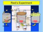 redi s experiment