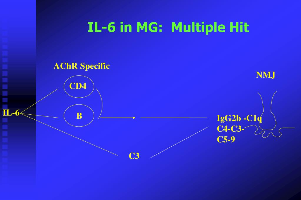 IL-6 in MG:  Multiple Hit