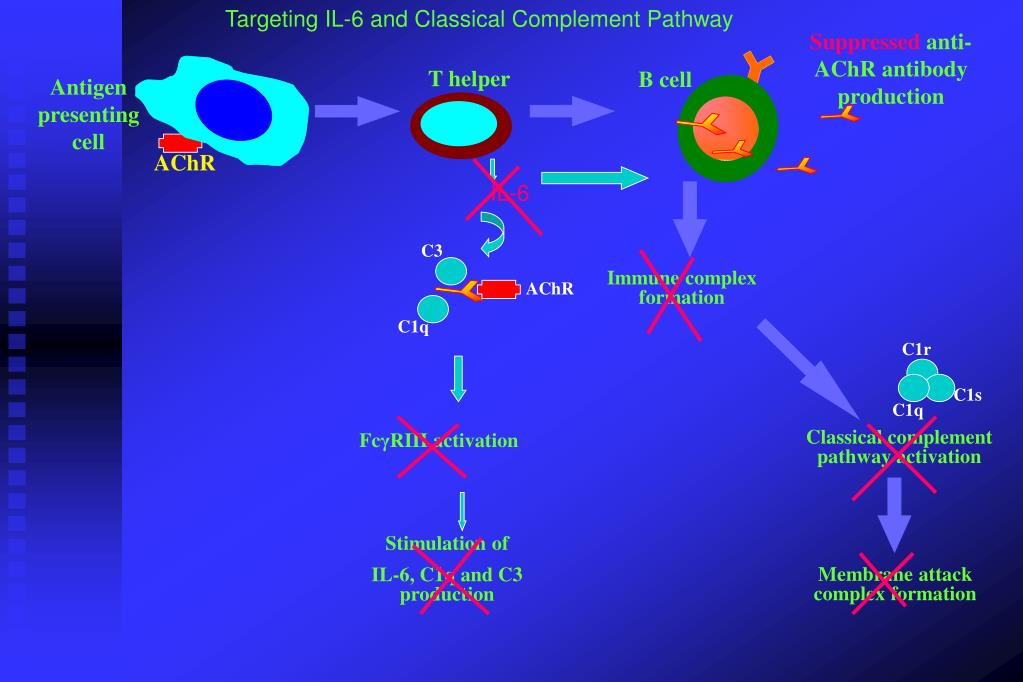 Targeting IL-6 and Classical Complement Pathway