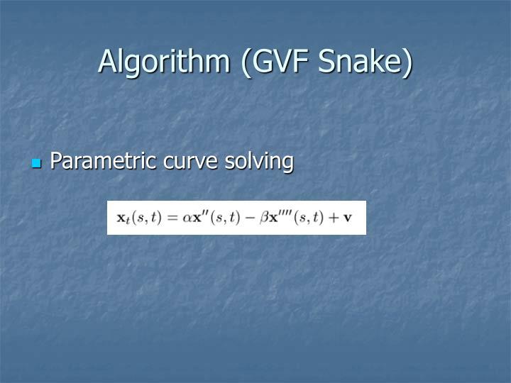 Algorithm (GVF Snake)