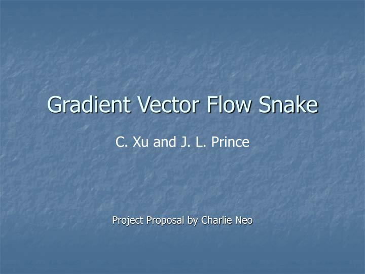 gradient vector flow snake n.
