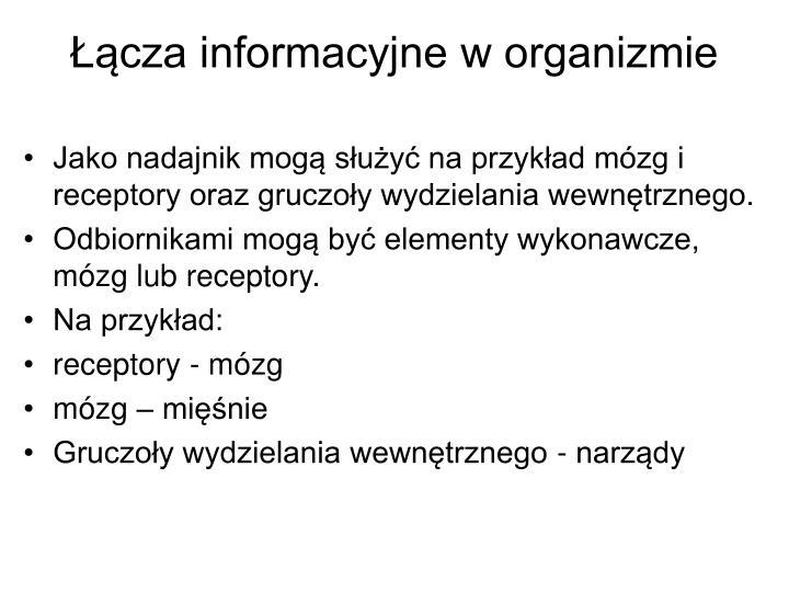 Łącza informacyjne w organizmie