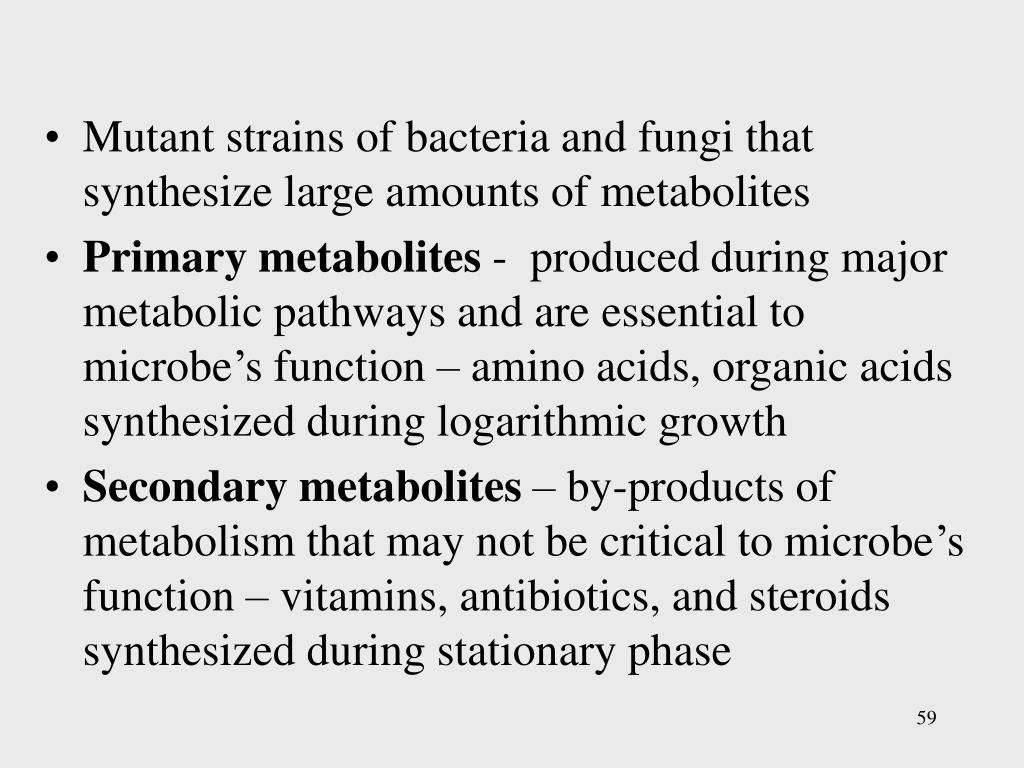 Mutant strains of bacteria and fungi that synthesize large amounts of metabolites