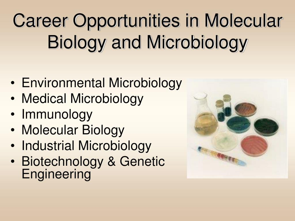 Career Opportunities in Molecular Biology and Microbiology