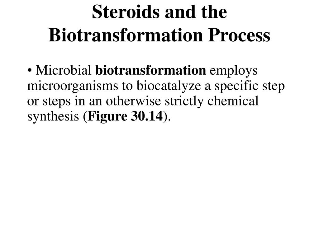 Steroids and the Biotransformation Process