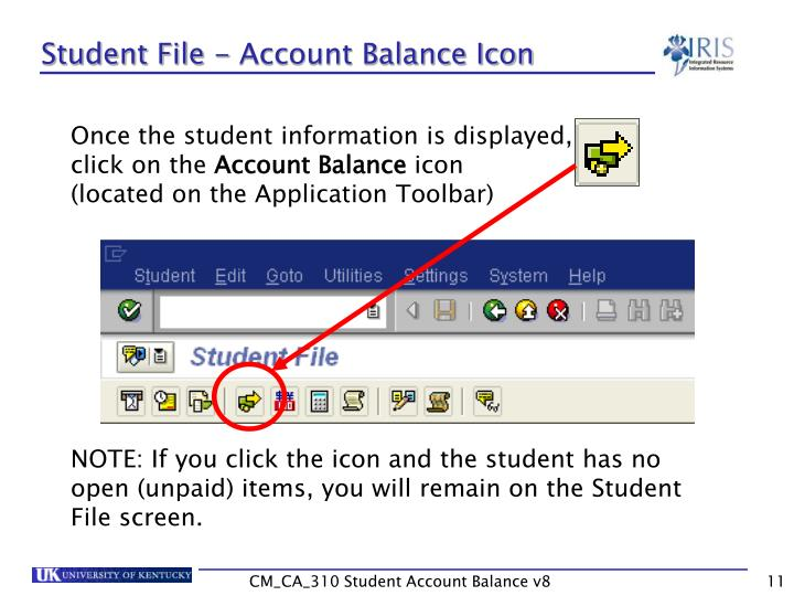 Student File - Account Balance Icon