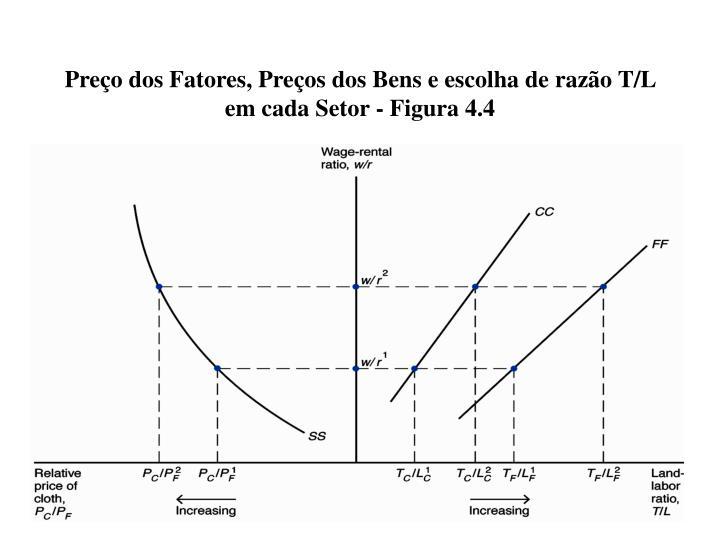 Preço dos Fatores, Preços dos Bens e escolha de razão T/L em cada Setor - Figura 4.4