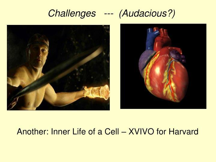 Challenges   ---  (Audacious?)