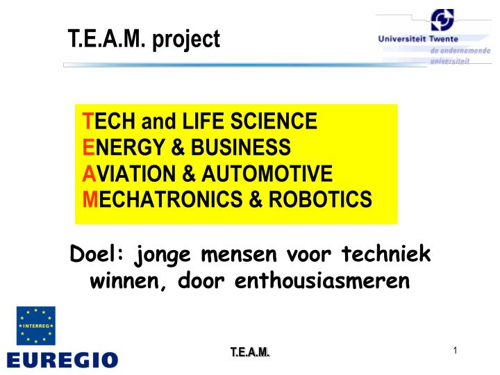 t e a m project n.