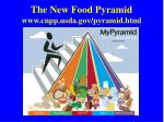 the new food pyramid www cnpp usda gov pyramid html