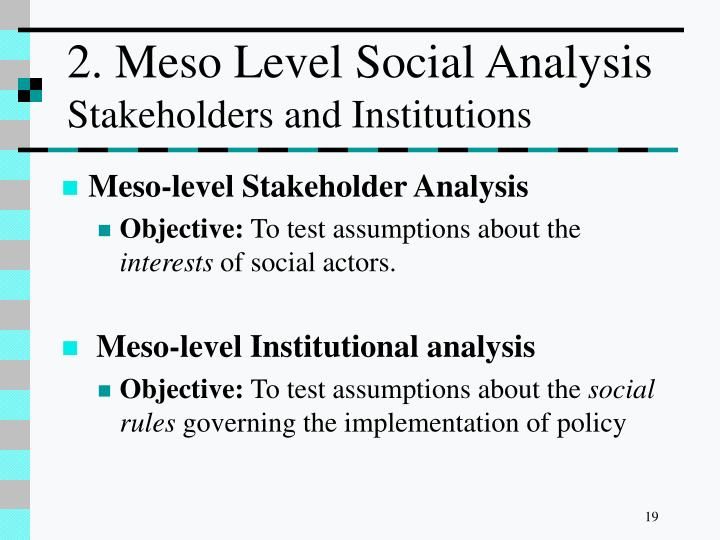 2. Meso Level Social Analysis