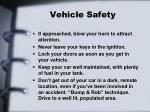 vehicle safety10