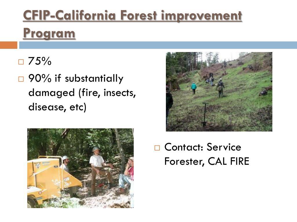 CFIP-California Forest improvement Program