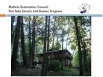mattole restoration council fire safe forests and homes program
