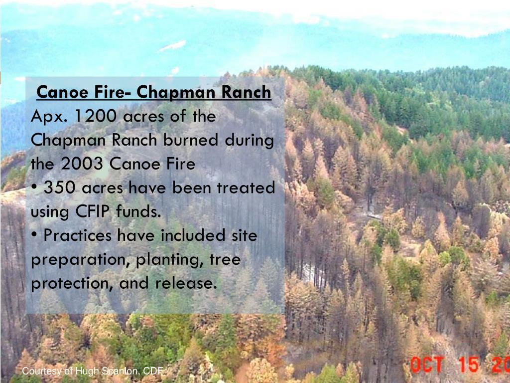 Canoe Fire- Chapman Ranch