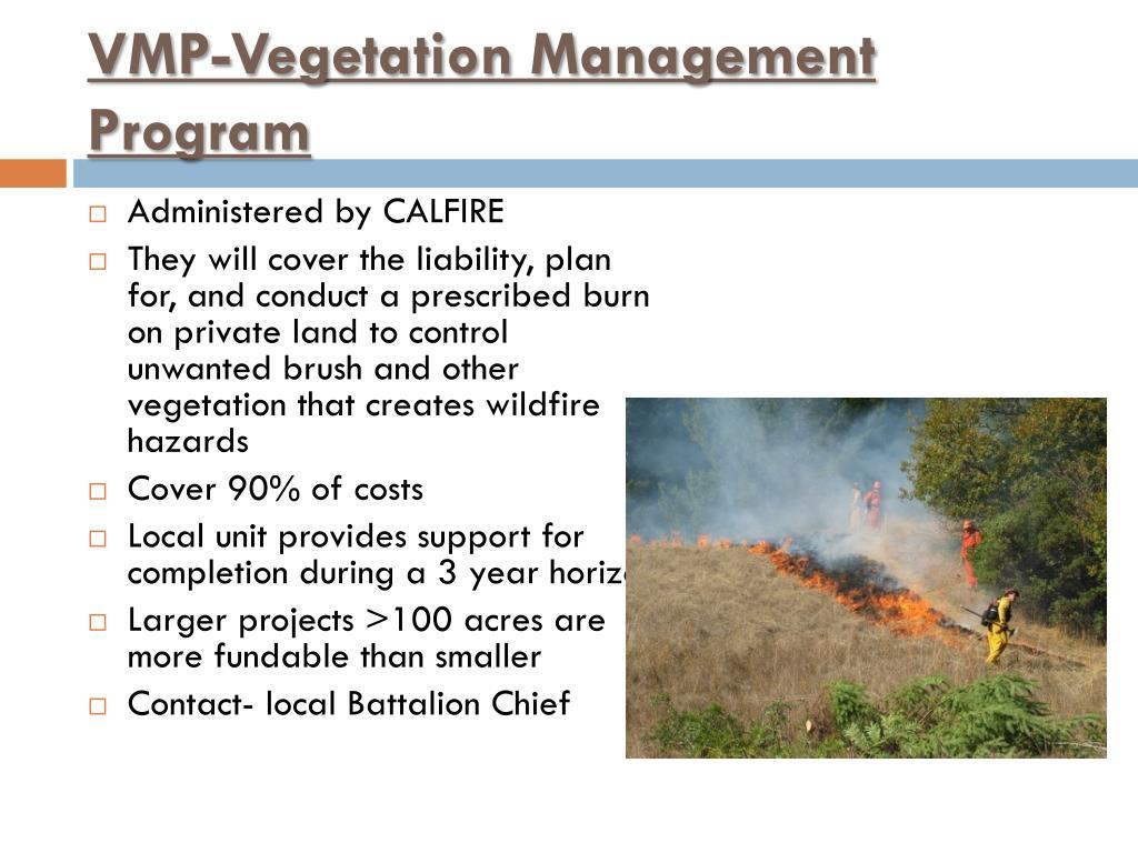 VMP-Vegetation Management Program