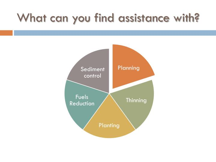 What can you find assistance with