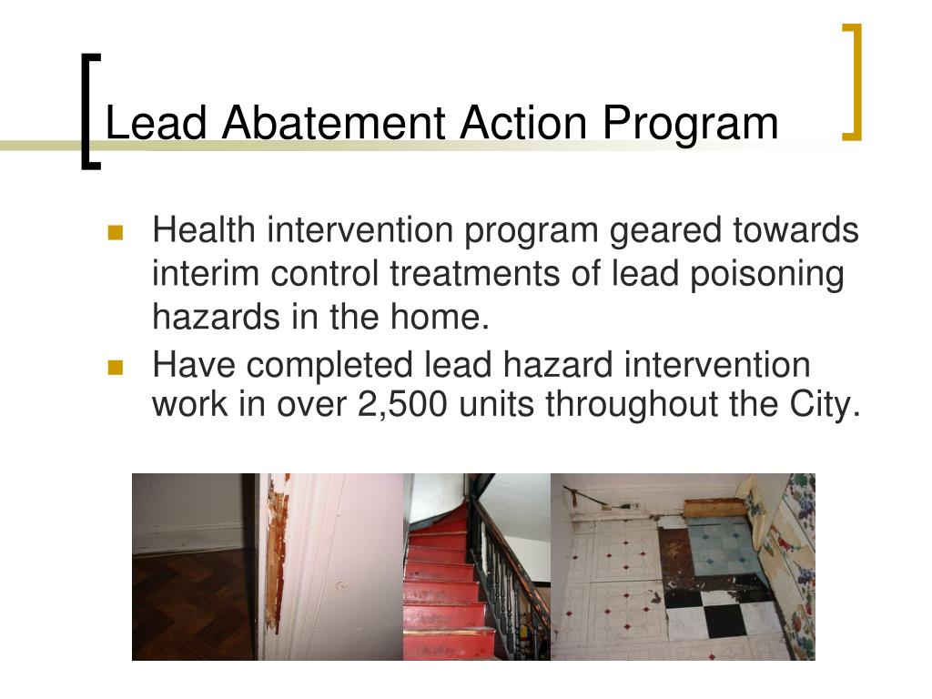 Lead Abatement Action Program
