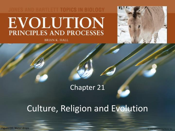 chapter 21 culture religion and evolution n.