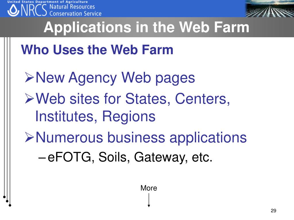 Applications in the Web Farm