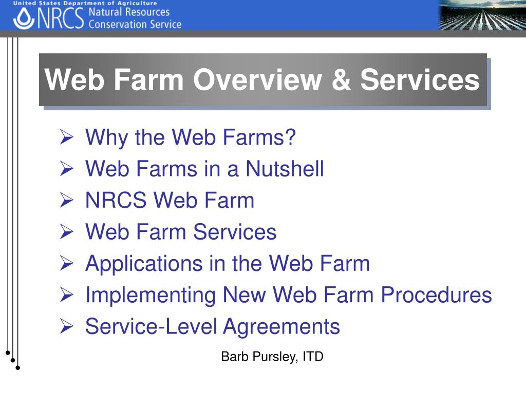 Web Farm Overview & Services