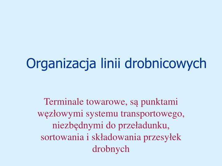 Organizacja linii drobnicowych