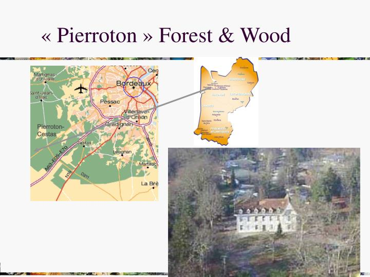 « Pierroton » Forest & Wood