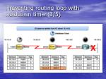 preventing routing loop with holddown timer 3 5