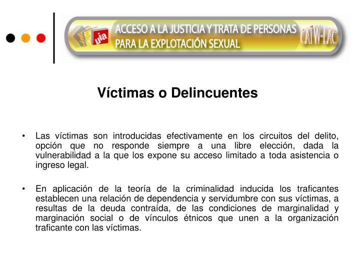 Víctimas o Delincuentes