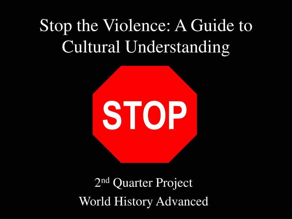 stop the violence a guide to cultural understanding l.