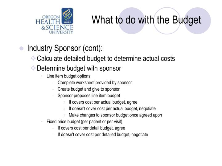 What to do with the Budget