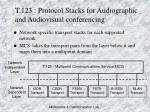 t 123 protocol stacks for audiographic and audiovisual conferencing