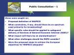 public consultation 1