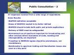 public consultation 2
