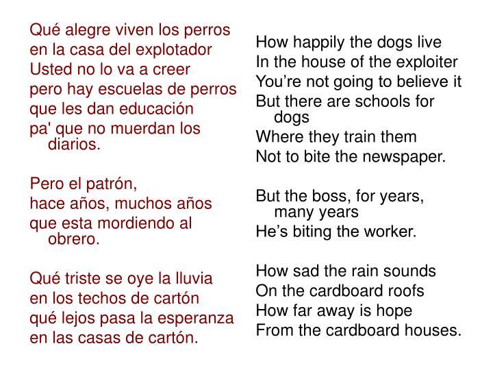 Qué alegre viven los perros